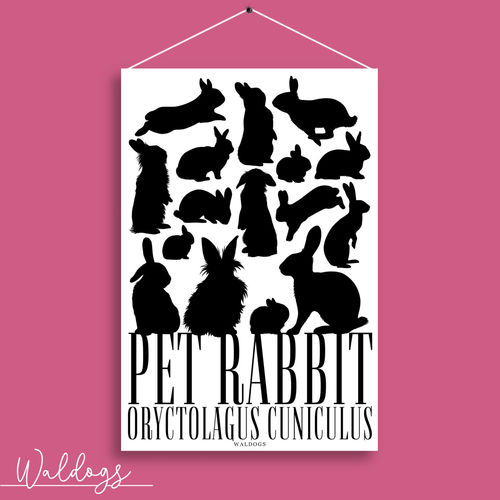 Pet Rabbit White 20x30cm